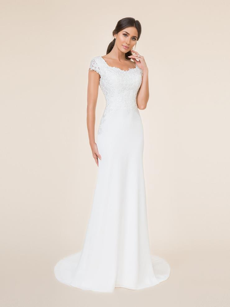 Modesty by Moonlight Bridal M5001